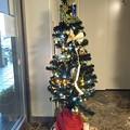 Photos: クリスマスツリー 五井温泉