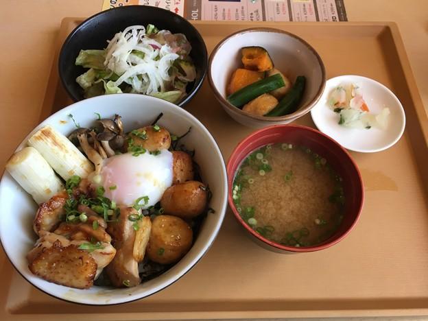徳島産 阿波尾鶏の地どり丼