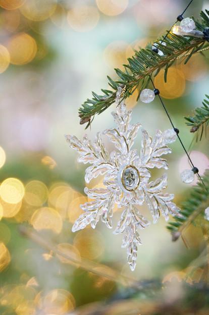 明るいクリスマス
