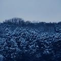 Photos: 寒々しい朝
