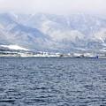 写真: 冬の琵琶湖南湖