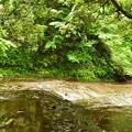 6-13 090濃溝の滝