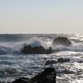 Photos: 城ヶ島 海その689 IMG_1131