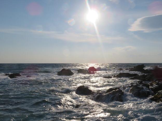 城ヶ島 海その746 IMG_1204