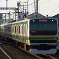 Photos: 湘南新宿ライン 特別快速小田原行 RIMG3433