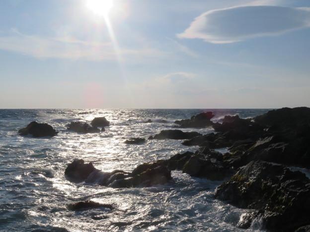 城ヶ島 海その755 IMG_1209
