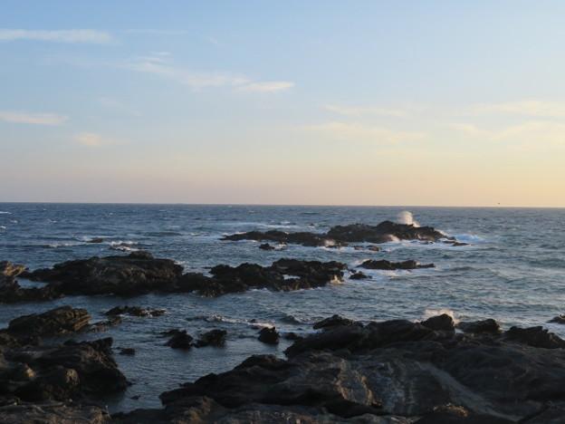 城ヶ島 海その758 IMG_1359