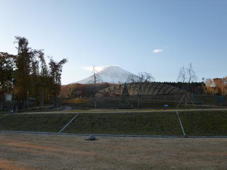 樹空の森から富士山を望む1