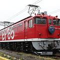 Photos: EF65-1118 はくつるHM付