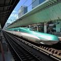 Photos: 東北新幹線E5系