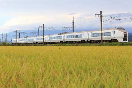 651系K105編成 お召し列車予備車