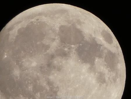160817-お月さん (44)