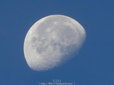 160823-お月さん(朝) (2)