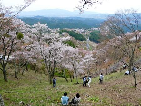 160410-吉野山 (20)