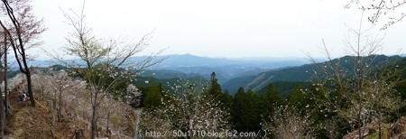 160410-吉野山 (37)