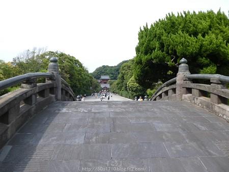 160606-鶴岡八幡宮 (5)