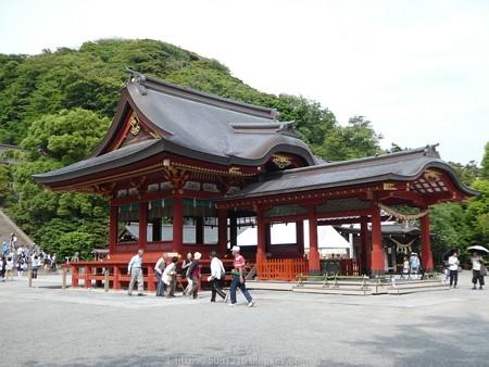 160606-鶴岡八幡宮 (11)