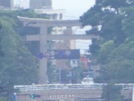 160606-鶴岡八幡宮 (27)
