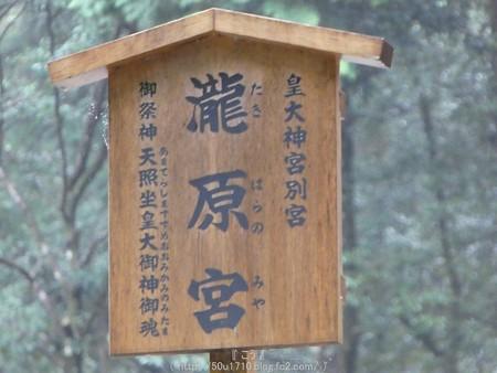 161017-瀧原宮 (28)