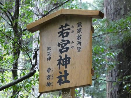 161017-瀧原宮 (35)