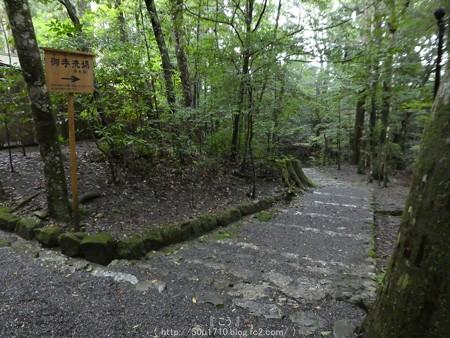 161017-瀧原宮 (51)