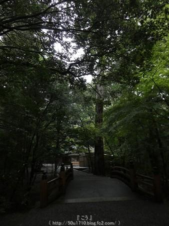 161017-瀧原宮 (65)