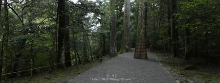 161017-瀧原宮 (45)