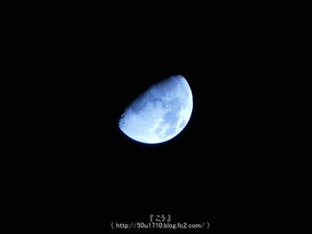 161109-お月さん (1)