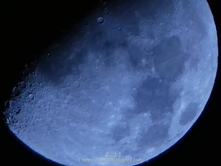 161109-お月さん (2)