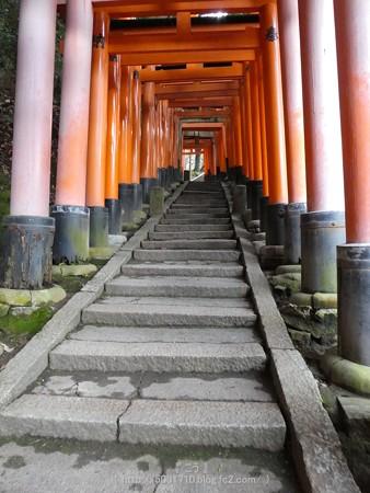 161229-伏見稲荷 (110)