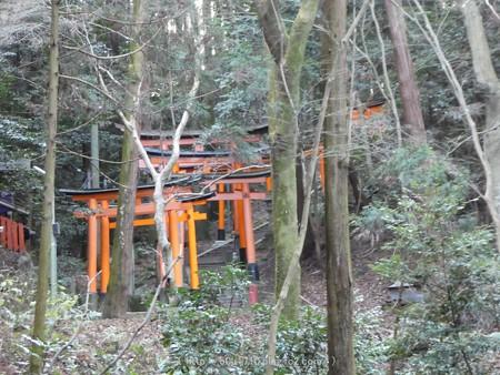 161229-伏見稲荷 (165)
