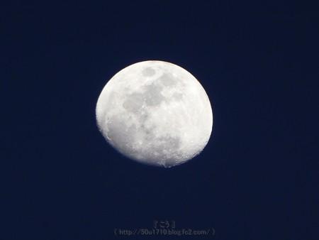 170309-お月さん (4)