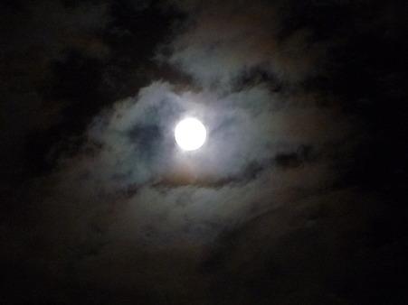 101023-お月さん (2)