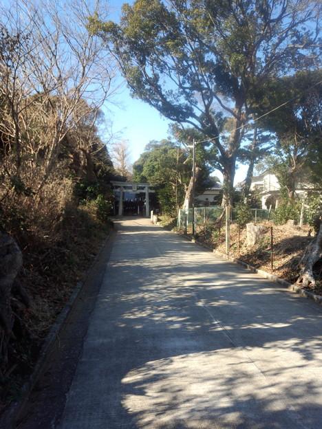 ここに引っ越して3年目、初めて近所の神社に来ました。都内や近郊の小さな神社は参道がないのがほとんどだけど、ここはちゃんと参道があってなかなかの雰囲気。