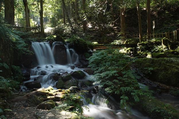 瓜割の滝_4