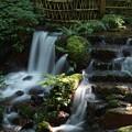 Photos: 瓜割の滝_6