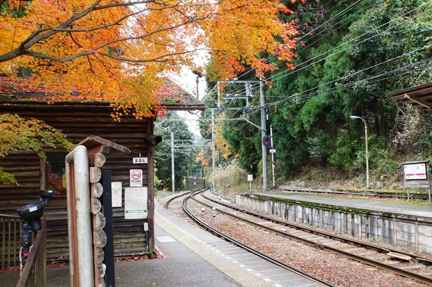 二ノ瀬駅の紅葉_7
