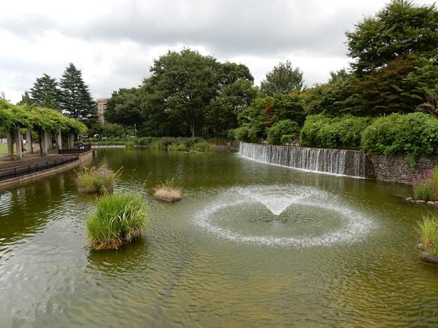 武蔵の池と扇の滝