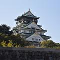 Photos: 大阪城 天守閣 内堀の外から撮影