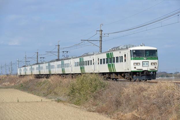 成田臨 185系