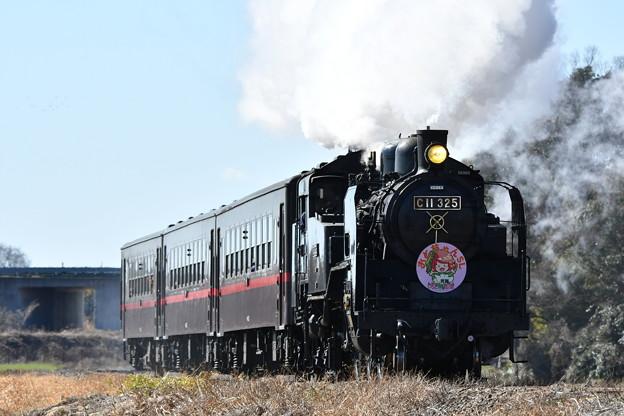 真岡鐵道 SL列車下り (C11325)