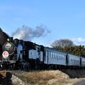 写真: 真岡鐵道 SL列車上り (C11325)
