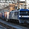 写真: 貨物列車 (EF210-3)