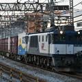 写真: 貨物列車 (EF641011)