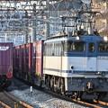 貨物列車 (EF652094)