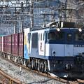 写真: 貨物列車 (EF641025)