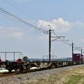 写真: 貨物列車 後追い