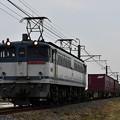 貨物列車 (EF652092)