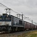 貨物列車 (EF641049 広島更新色)