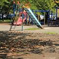 合浦公園・枯れ葉と遊具01-11.09.15